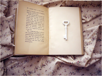 Projeto literário: Você tem o costume de escrever um diário?