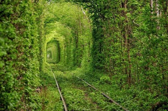 Túnel do Amor da Ucrânia: mistura sonho com realidade