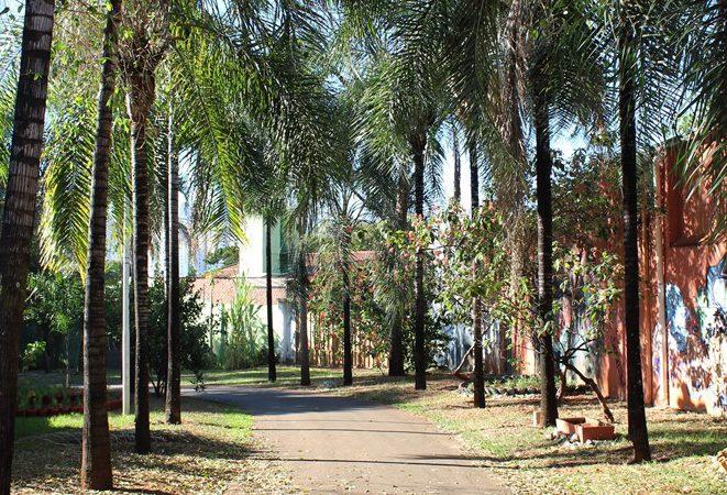 Cheio de praças, Setor Sul em Goiânia foi inspirado nas Cidades Jardins