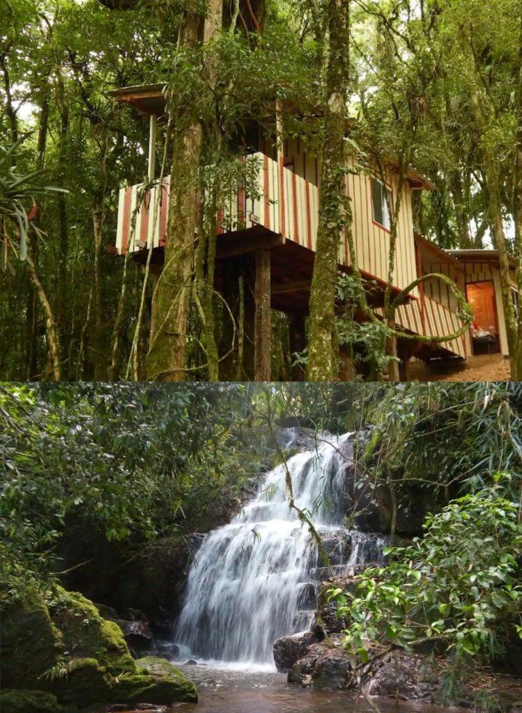 casas na árvore para se hospedar no Brasil