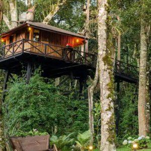 Viagem na pandemia? Cinco casas na árvore para se hospedar no Brasil