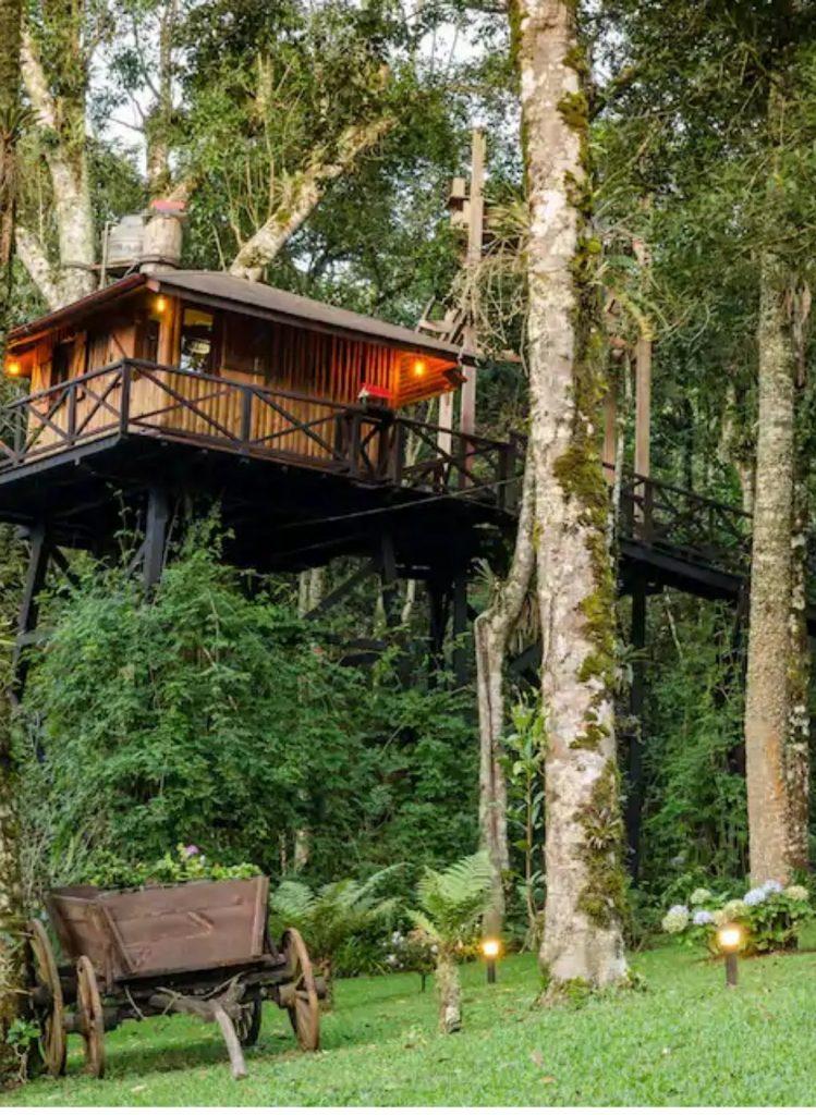 casas na árvore para se hospedar no Brasil lary di lua